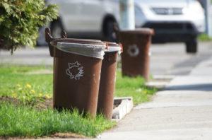 Conférence – Bac brun et compost, qu'est-ce que c'est? @ Maison culturelle et communautaire de Montréal-Nord